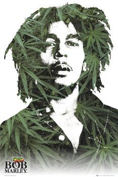 plakat BOB MARLEY - LEAVES