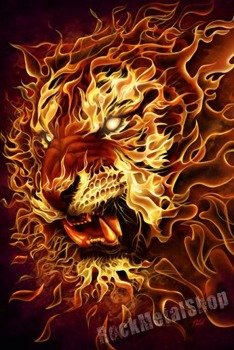 plakat FIRE LION