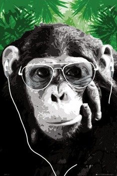 plakat MONKEY - SHADES