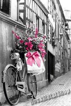 plakat PINK FLOWERS