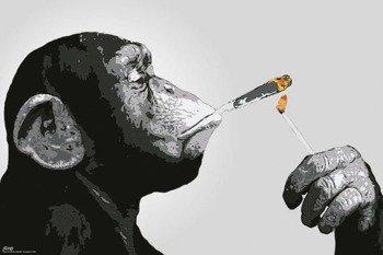 plakat STEEZ - SMOKING