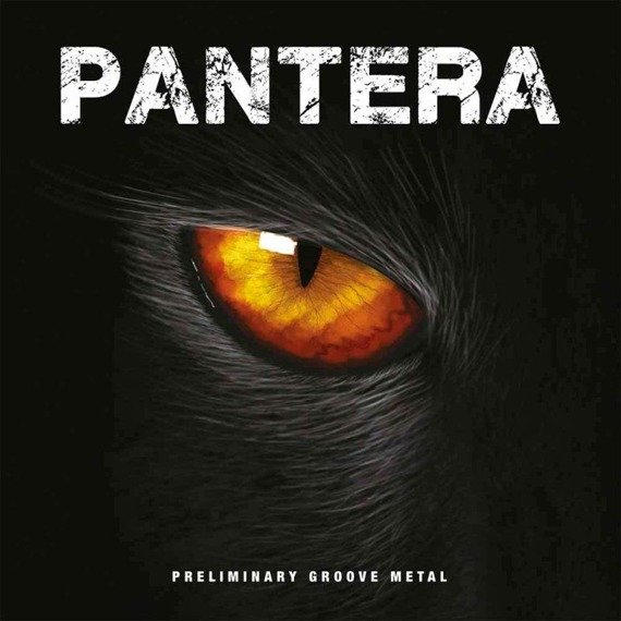 PANTERA: PRELIMINARY GROOVE METAL (LP VINYL)