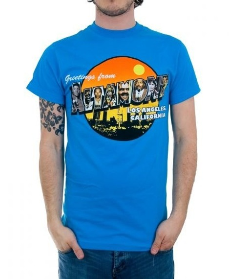 "koszulka ALTAMONT - GREETINGS.... (ROYAL) 09"""