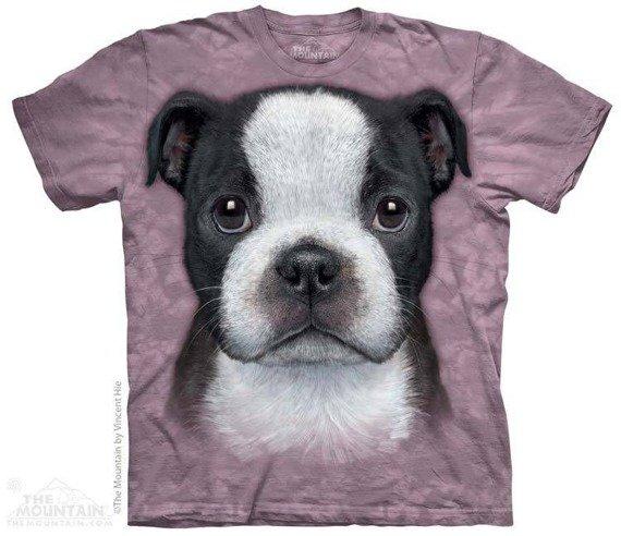 koszulka THE MOUNTAIN - BOSTON TERRIER PUPPY, barwiona